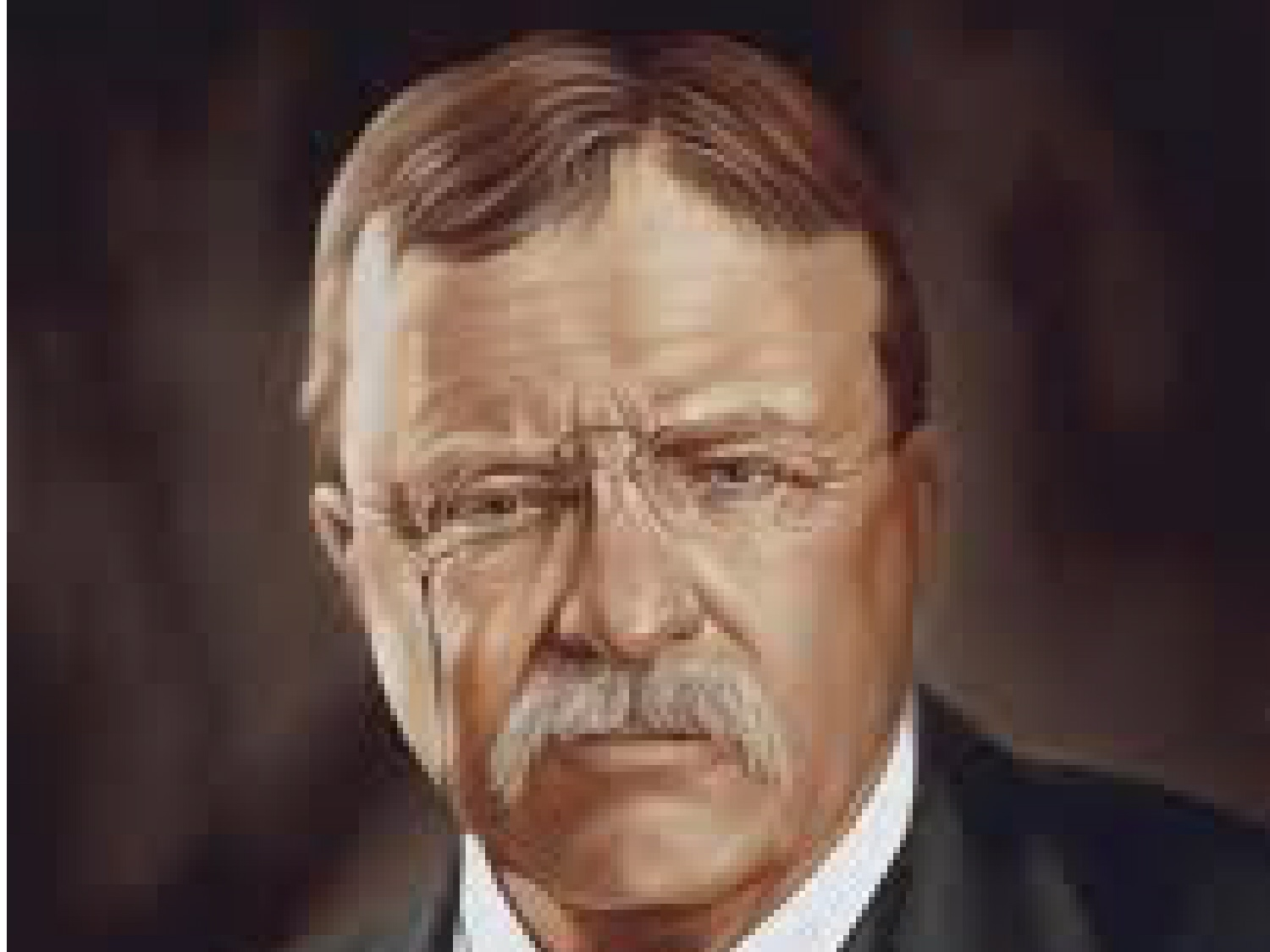 theodore roosevelts foreign policy A summary of 1901–1909: domestic policies in 's theodore roosevelt learn exactly what happened in this chapter, scene, or section of theodore roosevelt and what it means perfect for acing essays, tests, and quizzes, as well as for writing lesson plans.