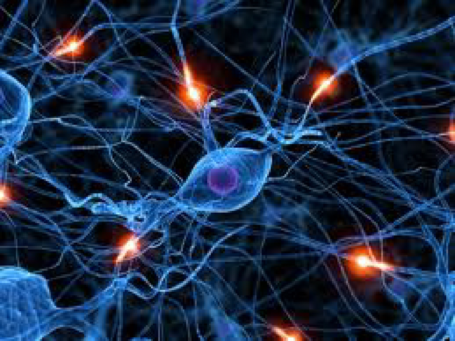 What is a Synapse? | pearlsofprofundity