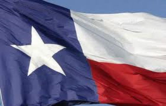 Texas state flag 2