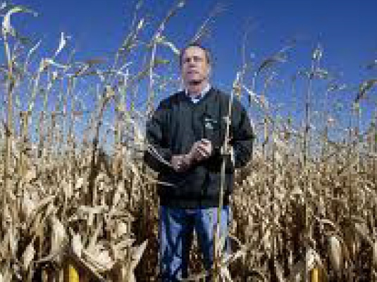 failed corn crop America 4a