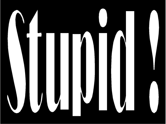 stupid 2a