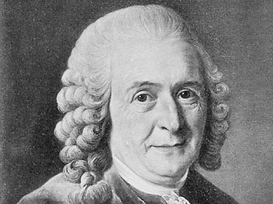 Carolus Linnaeus 2a