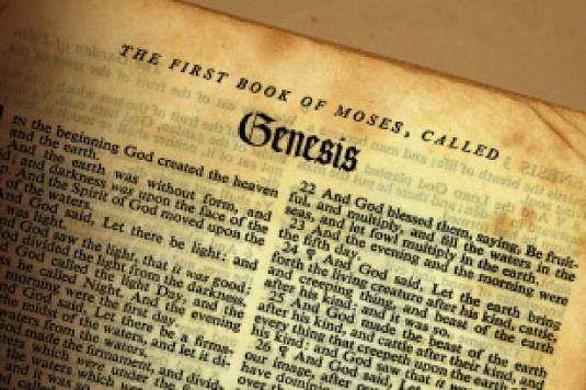Genesis 127