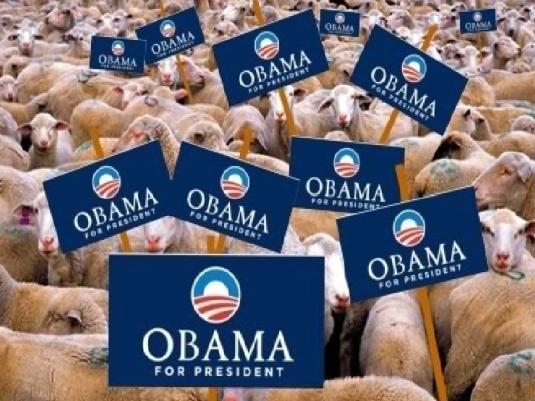 Obama sheep 1a