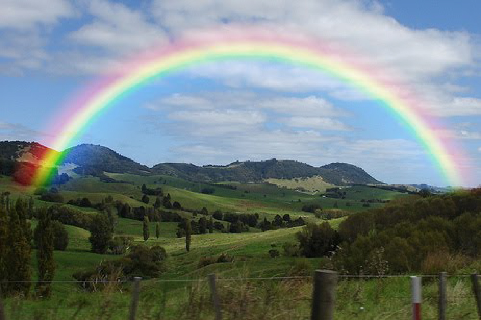 Is Rainbow Light Truly Natural