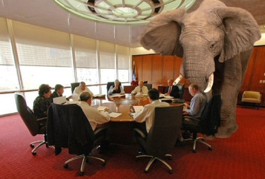 elephant in the room 1