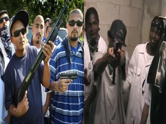 gang bangers 2a