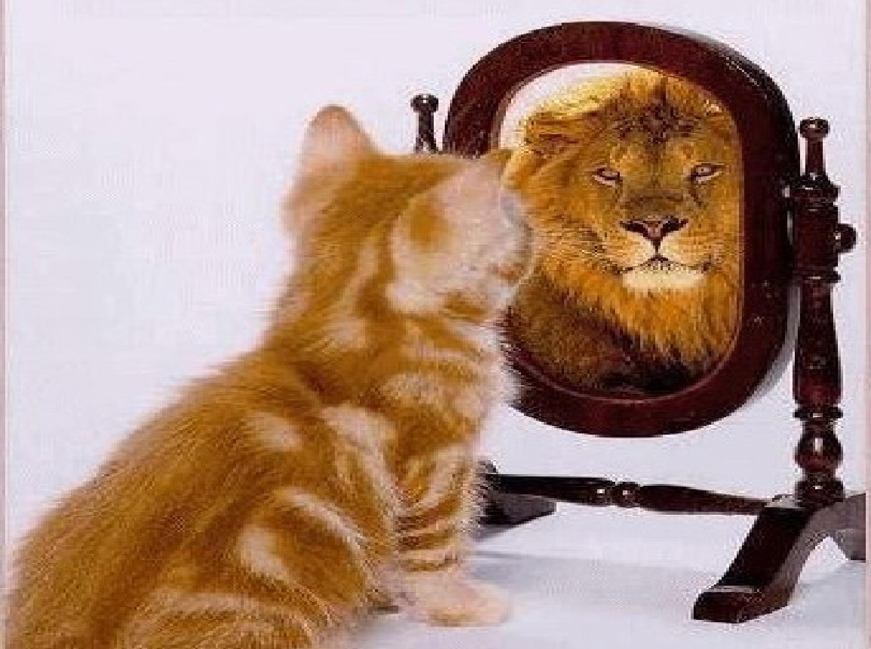 What I Am Like/Self-Perception Profile for Children (SPPC)