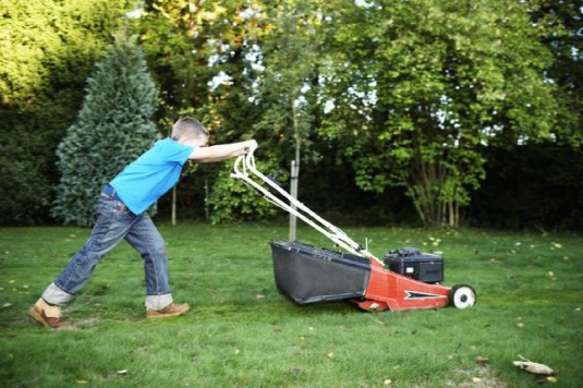 simple power mower 1