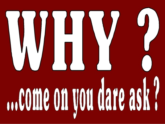 why you dare ask 1