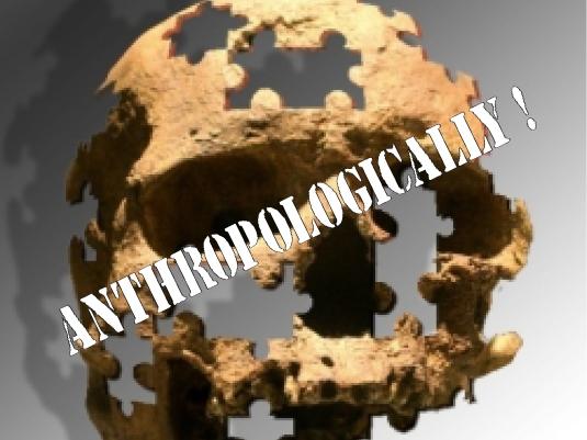 anthropological skull 1a