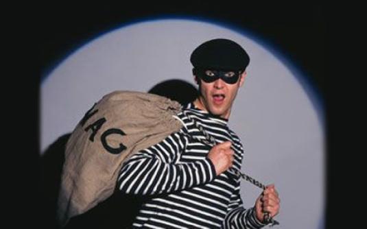 burglar - thief 2