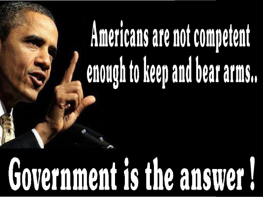 government is the answer 1a