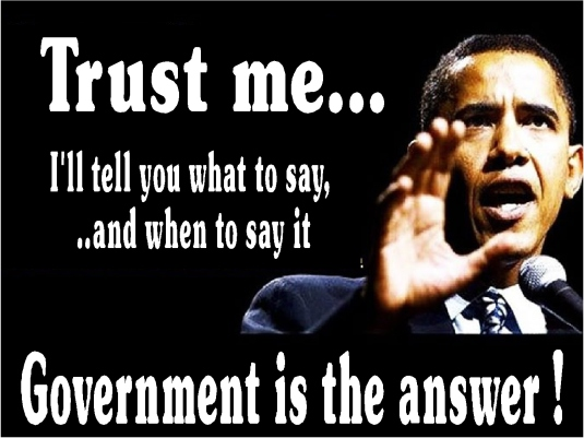 government is the answer 2a