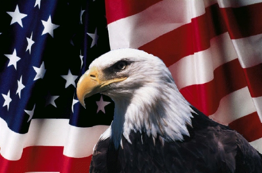 American flag and Eagle 2