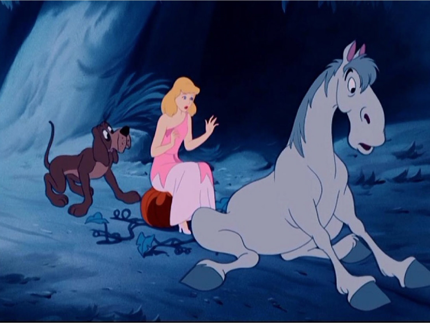 Will The Real Cinderella Please Stand Up