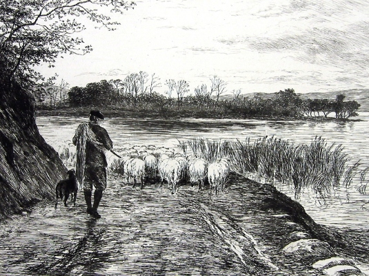 Scottish sheepherder 1a