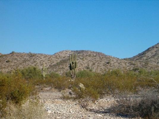Arizona landscape - without rub