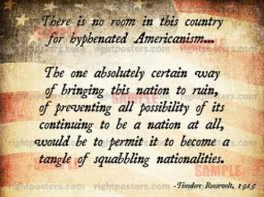 no hyphenated Americanism