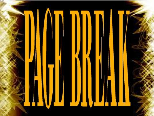 PAGE BREAK - Page Break 1a