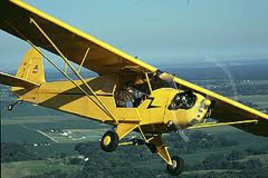 Piper cub 1