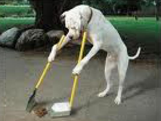 Pooper Scooper dog 1a