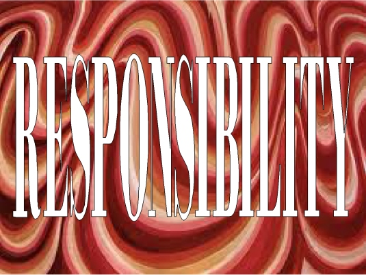 responsibility - page break 2A