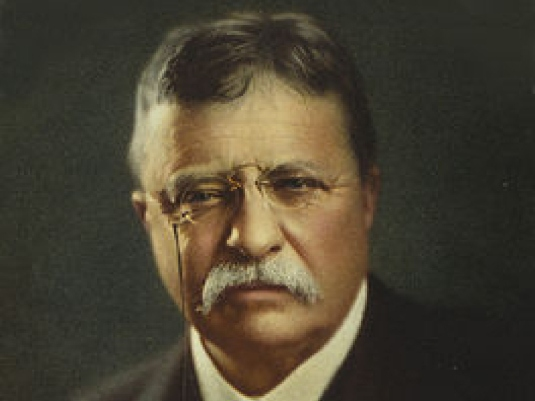 Theodore Roosevelt 1a