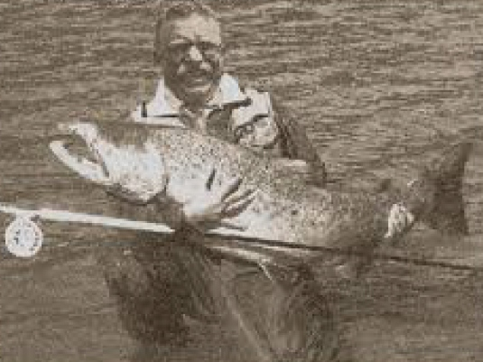Theodore Roosevelt - large fish 2a