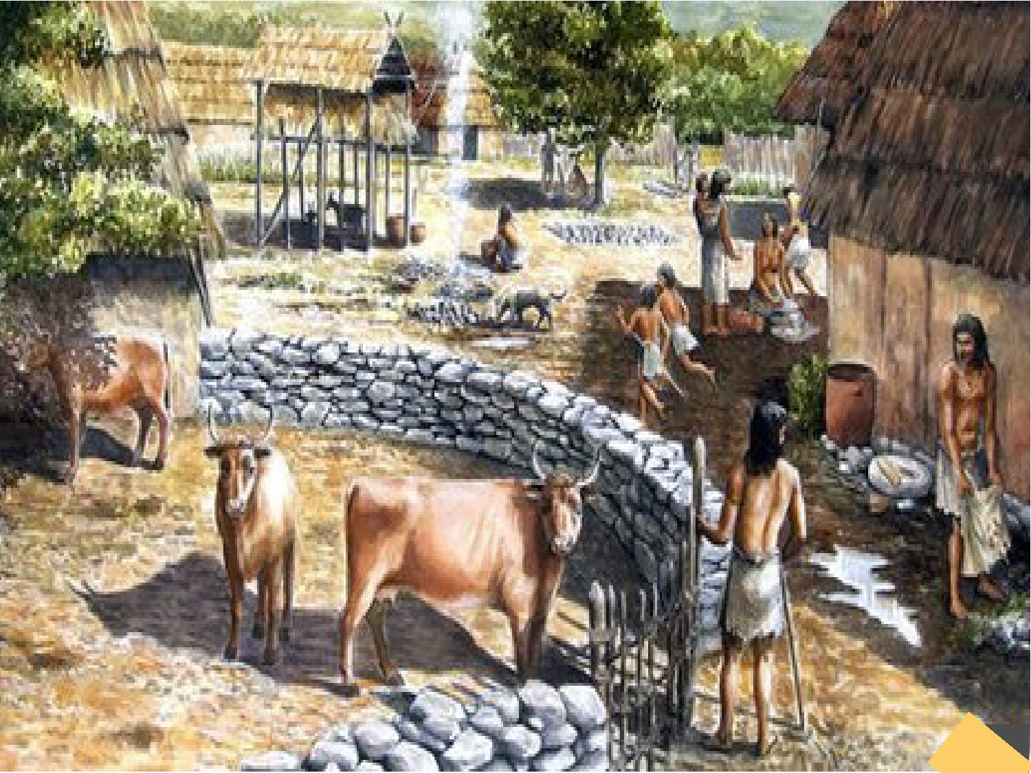 womens role in the bronze age Gender in minoan culture coming from crete has made us rethink what roles men and women played in minoan family in the late aegean bronze age:.