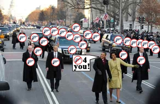 Second Amendment - chaos
