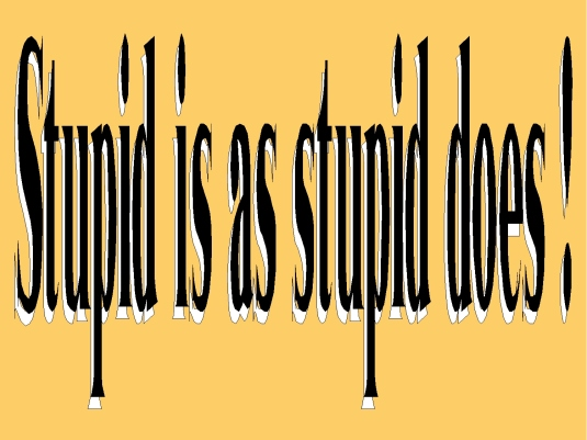 stupid is as stupid does 3a