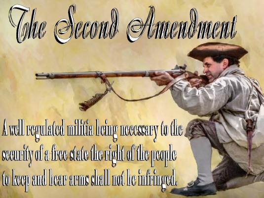 Second Amendment - graphic 2a