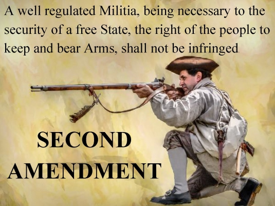 Second Amendment - rifleman 1A