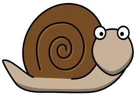 snail - clipart