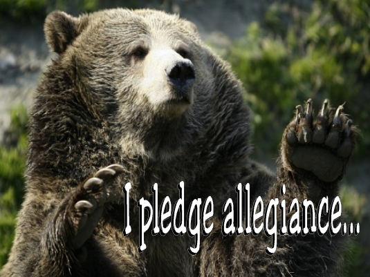 I pledge allegiance - grizzly b