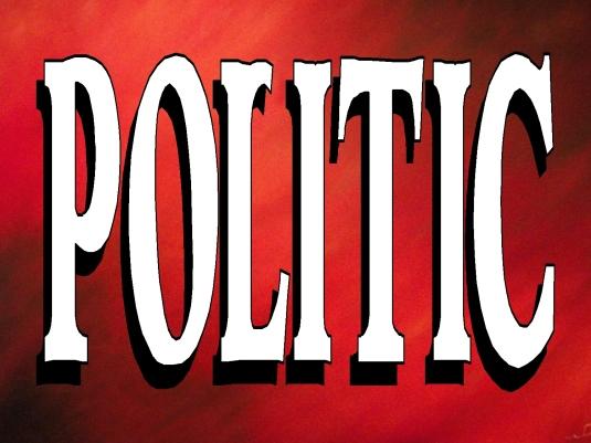 politic 2 - graphic 1a