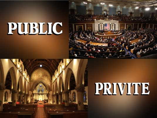 public and private - graphic 1A
