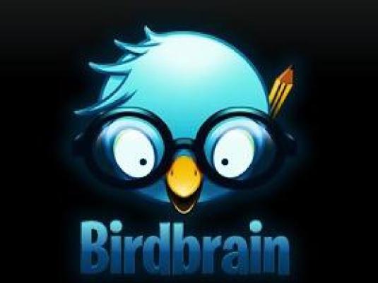 birdbrain 1