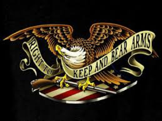 keep and bear arms 1