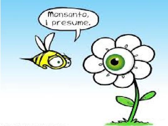 Monsanto I presume 1a