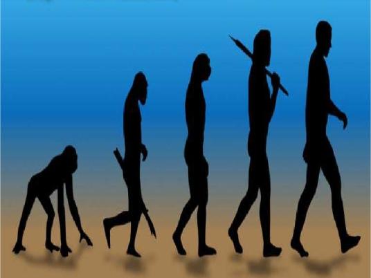 evolution - graphic 2a