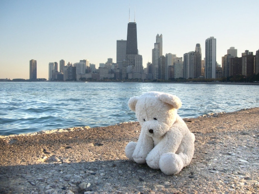 lonely teddy bear 1