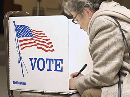 voter - voting 1