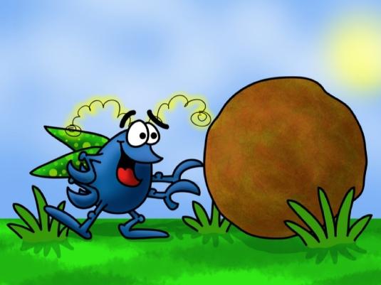 dung beetle - tallgrass