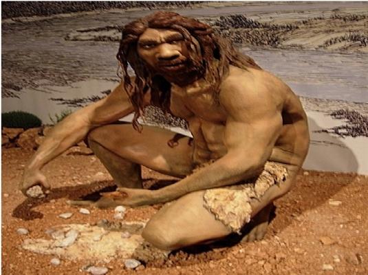 Homo erectus - chipping stones