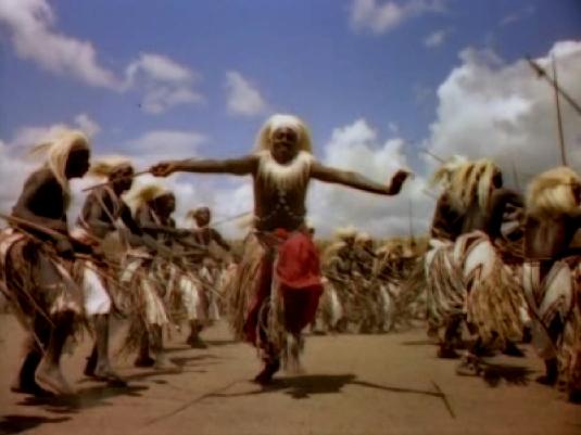 jubilant nomads 1