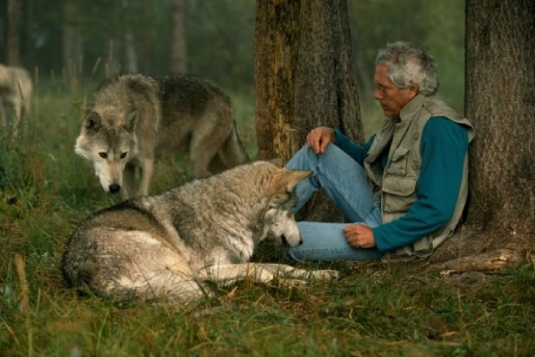 Wolf and man 1