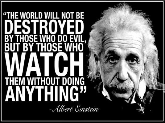 Albert Einstein quote 3a