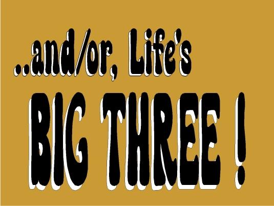 life's big three - graphic